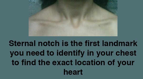 location of the heart sternal notch